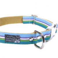 DOG COLLAR - CLASSIC STRIPES BLUE PURPLE TEAL